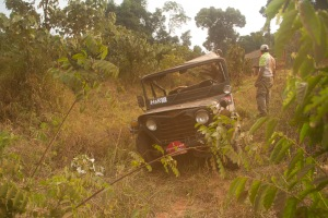 Jeep in the bush